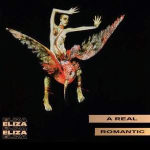 Image for 'A Real Romantic'