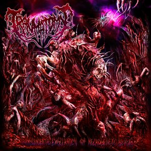 Image for 'Transcendental Evisceration Of Necrogenetic Beasts'
