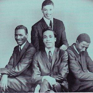 Bild für 'The Cavaliers'