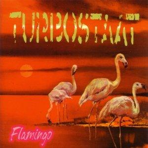 Bild für 'Flamingo'