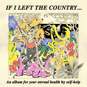 Image for 'If I Left the Country...'