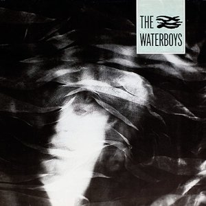 Image for 'The Waterboys'