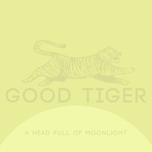 Image for 'A Head Full Of Moonlight'
