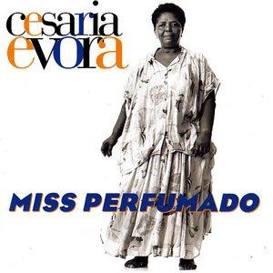 Image for 'Miss Perfumado'