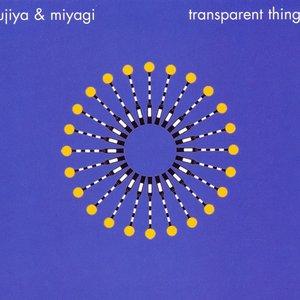 Image pour 'Transparent Things'
