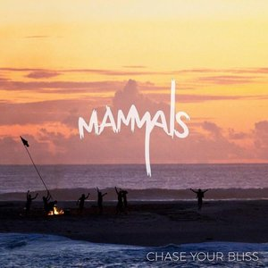 Image for 'Chase Your Bliss'