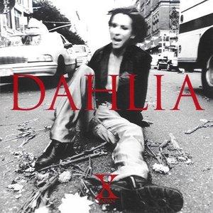 Image for 'DAHLIA'