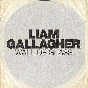 Zdjęcia dla 'Wall Of Glass'