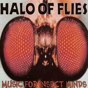 Immagine per 'Music For Insect Minds'