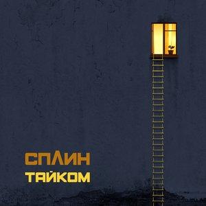 Image for 'Тайком'