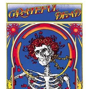Image for 'Grateful Dead (Skull & Roses) [Remastered]'
