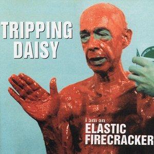 Image for 'I Am An Elastic Firecracker'