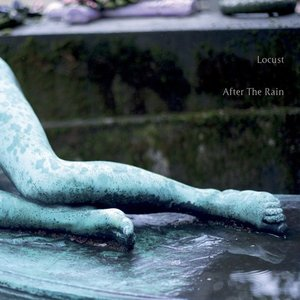 Image for 'After The Rain'