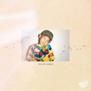 Изображение для '2nd album : Original Gimchi'
