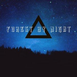 Изображение для 'Forest By Night'
