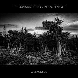 Image for 'A Black Sea'