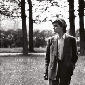 Image for 'Brilliant Trees (Remastered 2003)'