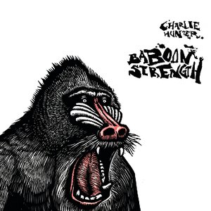 Image for 'Baboon Strength'