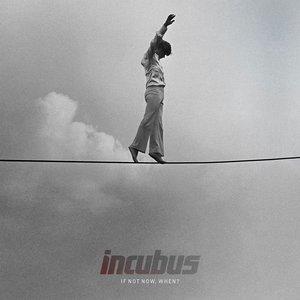 Bild für 'If Not Now, When?'