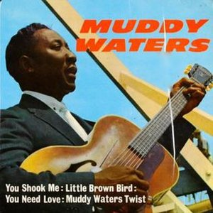 Image pour 'Muddy Waters'