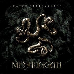 Bild für 'Catch 33'