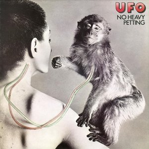 Image for 'No Heavy Petting (2007 Remaster)'