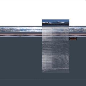 Bild für 'Substrata + Man with a Movie Camera'