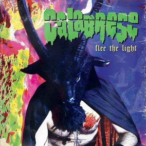 Image for 'Flee the light'