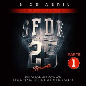 Imagen de 'Concierto 25 Aniversario (Pt. 1)'