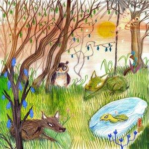 Image for 'Animal Kingdom'