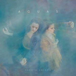 Image for 'Aguas'