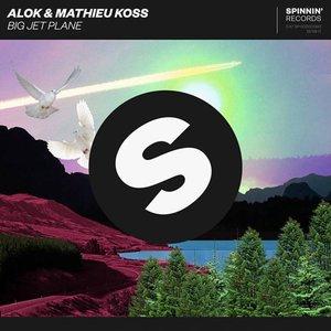 Bild für 'Alok & Mathieu Koss'