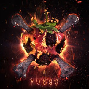 Image for 'Fuego'
