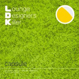 Image for 'L.D.K. Lounge Designers Killer'