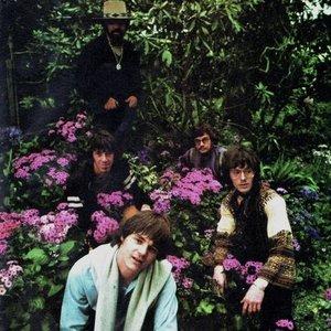 Bild für 'Steve Miller Band'