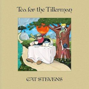 Image for 'Tea For The Tillerman (Super Deluxe)'