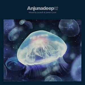 Image for 'Anjunadeep 02'