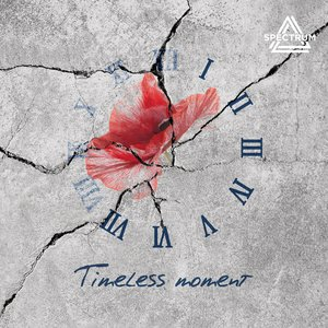 Image for 'Timeless moment'