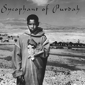 Image for 'Sycophant Of Purdah'