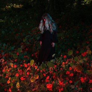 Image for 'Emily Jane White'