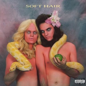 Image for 'Soft Hair'