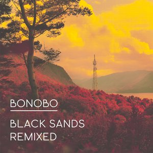 Image for 'Black Sands Remixed'