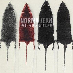 Image for 'Polar Similar'