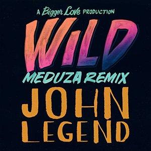 Image for 'Wild (MEDUZA Remix)'