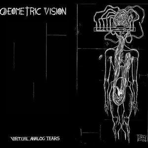 Imagen de 'Virtual Analog Tears'