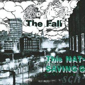 Image for 'This Nation's Saving Grace'