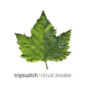 Image for 'Circuit Breaker'