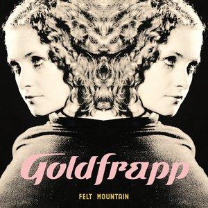 Image for 'Felt Mountain'