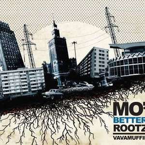 Image for 'Mo Better Rootz'