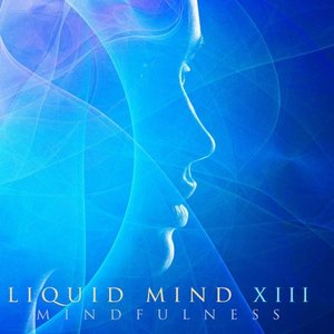 Image for 'Liquid Mind XIII: Mindfulness'
